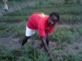 Au travail dans le jardin de l'école