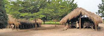 ADV Togo