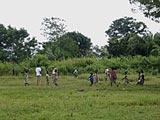 T.M. : Travaux des champs