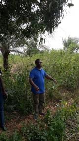 CSND Mission Togo 2015 (80/328)